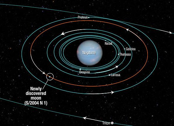 Karakteristik orbit dan posisi ketujuh Bulan terdalam planet Neptunus, yang mencakup separuh dari jumlah keseluruhan Bulannya. Semuanya memiliki orbit yang hampir seragam, yakni melingkar sempurna. Bandingkan dengan orbit Triton (Bulan terbesar bagi Neptunus) yang demikian lonjong. Sumber : Space Telescope Science Institute, 2013.