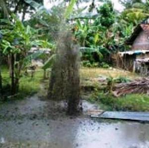 Gambar 1. Semburan lumpur Butuh Purworejo di kala siang, hanya beberapa jam setelah berawal. Nampak semburan masih setinggi pohon pisang. Sumber: Wewed Urip Widodo, 2013