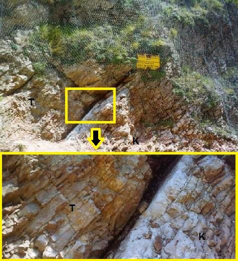 Gambar 5. Singkapan tipis lempung hitam yang sangat kaya akan Iridium, terjepit di antara batuan sedimen era Kapur (K) dan tersier (T) yang termiringkan akibat proses tektonik. Singkapan yang terletak di lembah Botticione, kota kuno Gubbio, wilayah Umbria (Italia) merupakan jejak geologis yang terbentuk dari proses tumbukan benda langit 65 juta tahun silam, peristiwa dahsyat yang menyapu bersih kawanan dinosaurus dan 75 % makhluk hidup saat itu dari muka Bumi. Lapisan lempugn tipis yang sama dijumpai juga di puluhan singkapan di berbagai penjuru Bumi, pada batuan yang seusia. Sumber: Alvarez dkk, 1990.
