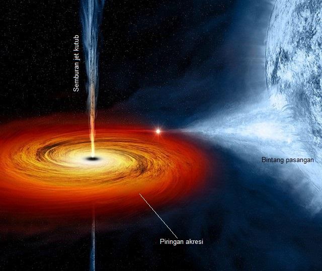 Gambar 4. Ilustrasi sebuah lubang hitam yang paling populer, yakni Cygnus X-1, bersama pasangannya. Sebagai sebuah sistem bintang ganda yang salah satu anggotanya telah bertransformasi secara radikal menjadi bintang eksotik berupa lubang hitam, maka sang lubang hitam mulai menyedot materi bintang biasa pasangannya hingga membentuk piringan akresi superpanas pemancar sinar ultraungu dan sinar-X yang sangat kuat. Meski lubang hitam sanggup menghisap apapun, namun hingga 90 % materi dalam piringan akresi justru takkan terhisap dalam lubang hitam dan malah terlempar ke angkasa. Sumber: NASA, 2014.