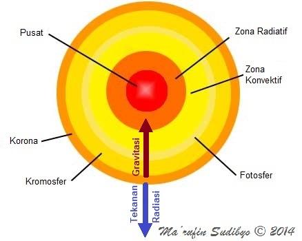 Gambar 2. Diagram sederhana struktur Matahari kita bila diiris dan bagaimana dimensi (ukurannya) sebagai hasil keseimbangan antara gravitasi yang selalu menuju ke pusat Matahari (dan selalu mencoba mengerutkannya) dengan tekanan radiasi produk reaksi fusi nuklir di pusat Matahari yang selalu keluar dari pusat Matahari (dan selalu memcoba mengembangkannya). Kesetimbangan ini akan berubah dramatis saat bahan reaksi fusi nuklir telah sangat terbatas. Bagaimana nasib bintang pada saat itu sangat bergantung pada massanya. Sumber: Sudibyo, 2014.