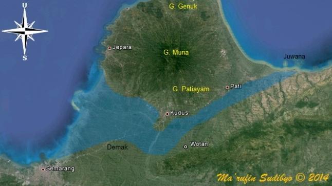 Gambar 4. Gambar 3. Selat Muria (warna biru muda) pada 500 tahun silam di masa kerajaan Demak. Dibanding 1.000 tahun sebelumnya, selat ini telah lebih sempit akibat sedimentasi besar-besaran. Hanya di ujung barat selat ini masih relatif luas dan nampak menyerupai corong (estuaria). Demak dan Juwana merupakan dua pelabuhan penting di selat ini. Lokasi semburan lumpur Pati di desa Wotan kini sudah berada di daratan hasil sedimentasi Sumber: Sudibyo, 2014 dengan basis Google Earth dan data dari Noerwidi, 2002.