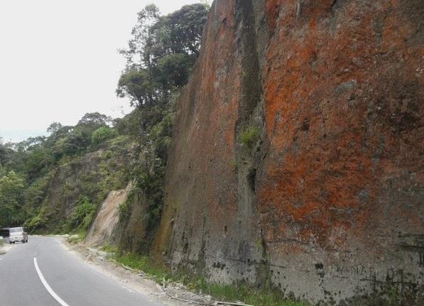 Gambar 4. Singkapan ignimbrit tepat di tepi jalan di pinggiran Danau Toba. Ignimbrit ini kaya akan besi dan telah teroksidasi sehingga berwarna kemerah-merahan mirip karat. Ignimbrit inilah jejak dari letusan gunung berapi yang dahsyat di masa silam, yang menghasilkan kaldera raksasa dan kini digenangi air menjadi Danau Toba. Diabadikan oleh Ridwan Hutagalung dalam rangka Geotrek Danau Toba 2-4 November 2012 TU. Sumber: Hutagalung, 2012.