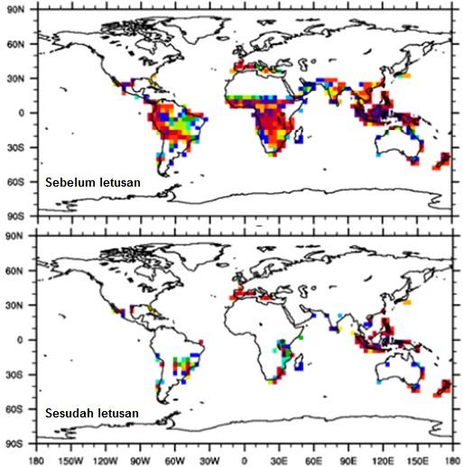 Gambar 8. Bagaimana dampak Letusan Toba Muda terhadap tumbuh-tumbuhan hutan hujan tropis terlihat dalam simulasi ini. Bila semula hutan hujan tropis masih cukup rapat di kawasan Amerika selatan, Afrika, Asia selatan dan Asia tenggara sebelum letusan (atas), maka hanya dalam empat tahun pasca letusan hampir semuanya telah musnah. Sumber: Robock dll, 2008.