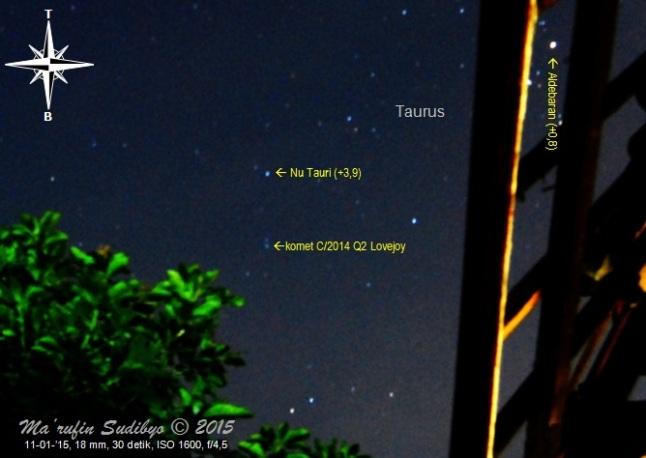 Gambar 5. Komet C/2014 Q2 Lovejoy menggantung di langit barat dengan latar depan pohon mangga, pada observasi hari ketiga. Diabadikan dengan Nikon D60 dan diolah dengan GIMP 2. Sumber: Sudibyo, 2015.