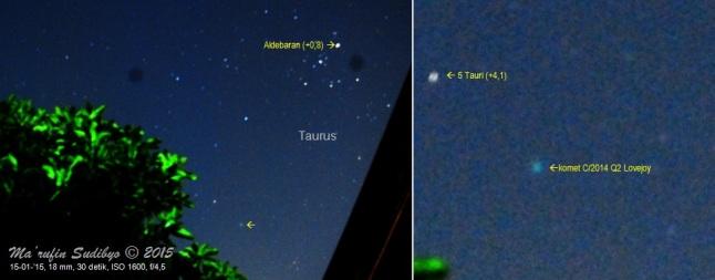 Gambar 6. Kiri: komet C/2014 Q2 Lovejoy pada observasi hari keempat, nampak menggantung di langit barat dengan latar depan pohon mangga. Kanan: perbesaran citra untuk area komet dan sekitarnya. Dibanding hari-hari sebelumnya, observasi di hari keempat ini menunjukkan komet berada dalam kondisi paling terang. Diabadikan dengan Nikon D60 dan diolah dengan GIMP 2. Sumber: Sudibyo, 2015.