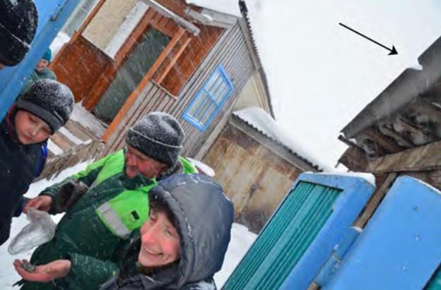 Gambar 11. Satu-satunya bangunan yang mengalami kerusakan akibat hantaman meteorit dalam Peristiwa Chelyabinsk 2013. Sebutir meteorit kecil, nampak dipegang Popova dengan tangan kiri, menghantam pinggir atap bangunan ini. Akibatnya pinggiran atap itu pun berlubang (tanda panah). Sumber: Popova dkk, 2013.