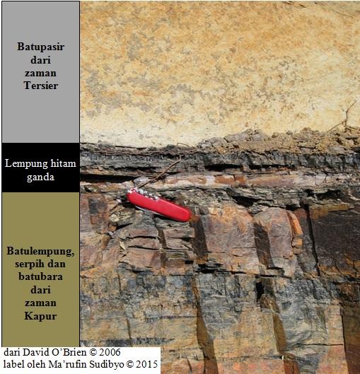 Gambar 10. Contoh lapisan lempung hitam di batas zaman Kapur-Tersier (batas Kapur-Paleogene) yang tersingkap sangat baik di lembah Raton, Colorado (Amerika Serikat). Di bawahnya terdapat sedimen zaman Kapur yang mengindikasikan lingkungan pengendapan berawa-rawa. Sementara diatasnya terdapat sedimen zaman Tersier (Paleogene). Karena relatif dekat dengan kawah raksasa Chicxulub, lempung hitam di sini relatif tebal dan terdiri dari dua sub-lapisan. Sub-lapisan bawah merupakan endapan produk pembentukan kawah raksasa Chicxulub. Sementara sub-lapisan atas (tebal 5 mm) berasal dari material asteroid penumbuk dan debu jelaga produk kebakaran hutan global. Sumber: Brien, 2006.