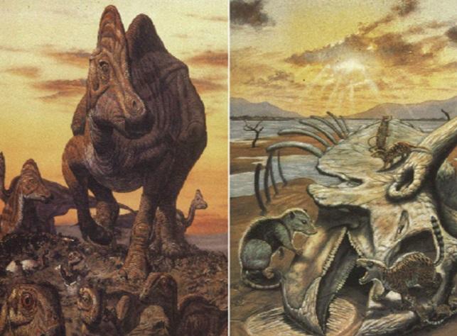 Gambar 1. Ilustrasi saat kawanan dinosaurus seakan merajai Bumi hingga akhir zaman Kapur (kiri) dan kemudian mendadak mati bergelimpangan di zaman geologi setelahnya (kanan). Punahnya kawanan dinosaurus beserta 76 % genera makhluk hidup lainnya terjadi dalam waktu bersamaan pada 65 juta tahun silam. Inilah peristiwa pemusnahan massal terdahsyat kedua di Bumi dalam kurun 250 juta tahun terakhir. Sekaligus menandai transisi zaman Kapur ke Tersier. Sumber: Penfield, 2009.