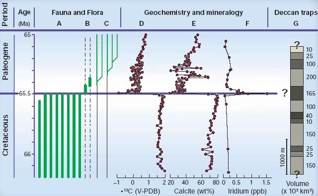 Gambar 6. Perbandingan antara rekaman stratigrafis dan skematis kehidupan biotik di sekitar batas zaman Kapur dan Tersier, atau di sekitar batas Kapur-Paleogene, dengan catatan kimiawi dan mineralogis dari lubang bor Atlantik Utara (ODP 207), yang diperbandingkan lagi dengan unit-unit erupsi di Dataran Tinggi Dekan. Nampak jelas mayoritas spesies zaman Kapur punah di batas Kapur-Paleogene (A). Sementara spesies oportunistik sempat bertahan hingga awal Paleogene (B). Spesies baru juga muncul di awal Paleogene dan tersebar luas ke zaman berikutnya (C). Kepunahan ini ditandai pula dengan merosotnya isotop Karbon-13 (D), pertanda terjadinya gangguan berat terhadap siklus karbon. Juga terjadi penurunan kalsit (E), yang menandakan aktivitas pengendapan karbonat di lautan terganggu. Sementara konsentrasi Iridium, sebagai penanda utama terjadinya tumbukan komet/asteroid, sempat melonjak dramatis di batas Kapur-Paleogene (F). Tak satupun dari rekaman kehidupan biotik dan catatan kimiawi-mineralogis tersebut yang berkorespondensi dengan letusan-letusan di Dataran Tinggi Dekan/Deccan traps (G), mengingat letusan gigantis tersebut telah dimulai semenjak 600 ribu tahun sebelum batas Kapur-Paleogene. Sumber: Schulte dkk, 2010.