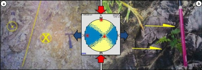 Gambar 8. (a). Bidang sesar Pacul (garis kuning) dan zona breksiasinya seperti tersingkap dalam batu gamping lempung formasi Kalibeng di Sumberejo, sektor timur laut Gunung Pandan. Tanda (x) menunjukkan arah gerak segmen batuan di sisi bidang sesar yang tegaklurus memasuki bidang foto, sementara tanda (.) keluar dari bidang foto. (b). Striasi di dekat bidang sesar Pacul. Analisis kinematika menunjukkan gores-gores ini disebabkan oleh tegasan purba berorientasi utara-selatan. Sumber: Kurniawati, 2014 dalam Salahuddin Husein, 2015.