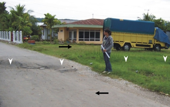 Gambar 4. Moletrack (panah putih) di sepanjang sesar besar Sumatra segmen Sumani yang terdeteksi di Kasiak (propinsi Sumatra Barat) dalam Gempa ganda Sumatra 6 Maret 2007 TU. Dua panah hitam menunjukkan arah pergeseran masing-masing segmen permukaan kerak bumi sebelah menyebelah moletrack. Dari moletrack ini diketahui bahwa di lokasi tersebut telah terjadi pergeseran mendatar sebesar 30 cm dan penurunan (di latar depan) sebesar 20 cm. Sumber: Daryono dkk, 2012.