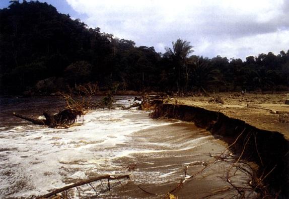 Gambar 3. Bibir pantai yang tererosi berat hingga tergerus akibat terjangan Tsunami 3 Juni 1994 di pantai Rajegwesi (Kabupaten Banyuwangi). Tsunami setinggi maksimum 14 meter dpl menggempur pantai ini dan menggenang hingga 400 meter ke daratan. Sumber: Synolakis dkk, 1995.