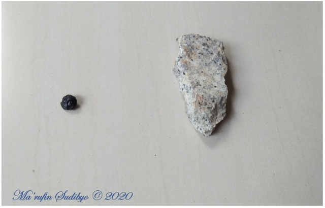 Gambar 2. Sampel Batu Satam (kiri) dan Granit Belitung (kanan). Dua komponen tulang punggung (Geopark) Belitung. Sumber: Sudibyo / koleksi pribadi, 2019.