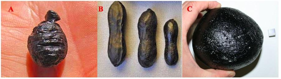 Gambar 5. Tiga macam tektit yang menjadi bagian grup tektit Australasia. a. Agni Mani atau Javanit, yang ditemukan di pulau Jawa. b. Australit sebanyak tiga butir berbentuk dumbell, yang ditemukan di Australia. Dan c. Filipinit, yang ditemukan di Filipina. Semuanya terbentuk dari satu sumber yang sama pada 790.000 tahun silam. Sumber: MeteoriteTimes.Com/Lehrman, 2012 & Tektites.co.uk/Aubrey, 2011.